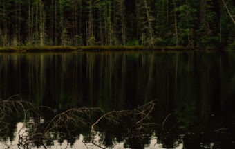 Camping at Algonquin Park - Ontario Provincial Parks